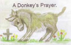 The Asswin Project for Donkeys  A Donkey's prayer