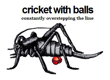 cricket with balls blog constantly overstepping the line