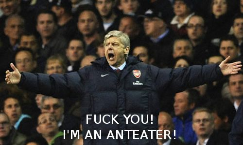fuck you im an anteater arsene wenger