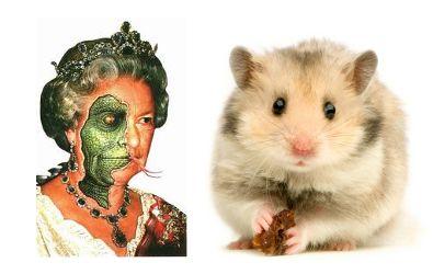 reptile reptilian queen elizabeth II dead hamster david icke